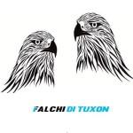 Falchi di Tuxon